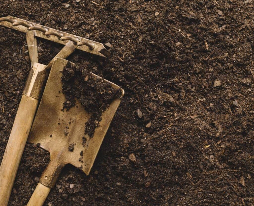 shovel and rake used for leveling soil